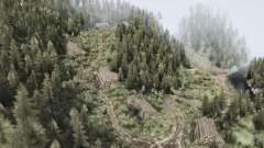 Лес 7