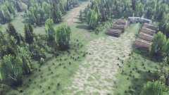 Глубоко в лесу v2.0 для Spin Tires