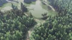 Зелёная долина для Spin Tires