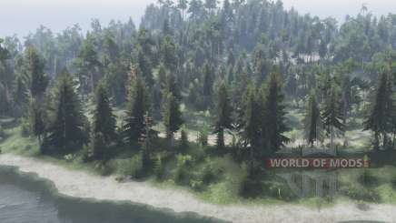 The Forest Roads для Spin Tires