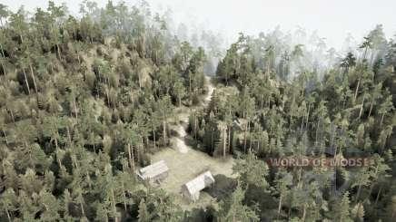 Холмистый лес для MudRunner