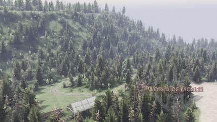 Где-то в лесу для Spin Tires