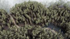 Ҭёмный лес для MudRunner