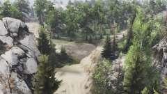 Горный лес для Spin Tires