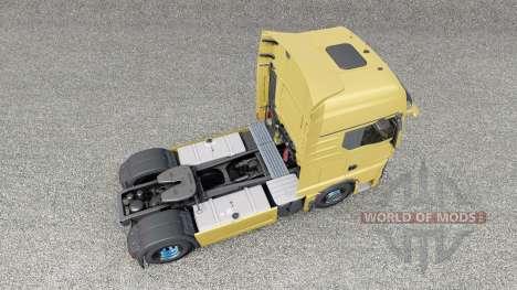 MAN TGX 18.510 2020 для Euro Truck Simulator 2