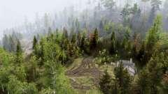 Лесные холмы для Spin Tires