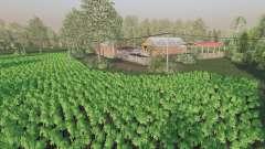 Staropolska Wies для Farming Simulator 2017