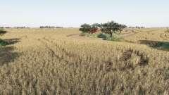 Western Australia v2.0 для Farming Simulator 2017