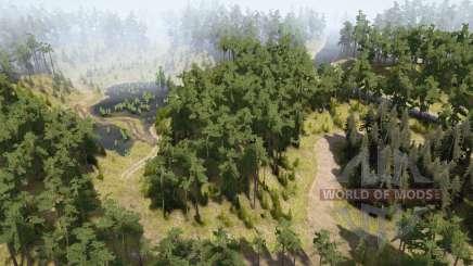 Зелёный лес для MudRunner