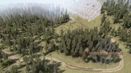 Fields and forest для MudRunner