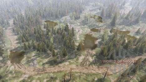 Летний лес v1.1 для Spin Tires